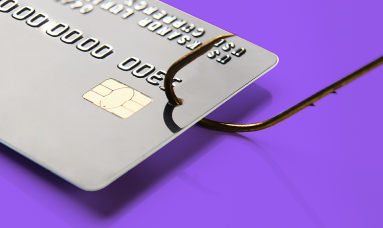 phishing credit card PCI data